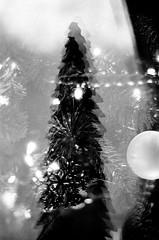 Layers of Christmas (oh it's amanda) Tags: nikonf3 nikonf3hp ilfordhp5 ilfordhp5plus ilford nikon50mm18ais mississippi senatobia testroll 35mm christmas christmaslights multipleexposure