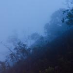 Through the Clouds thumbnail