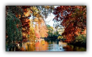 Ballade automnale (Autumn walk) 3