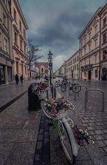 Exploring Krakow old town (Vagelis Pikoulas) Tags: krakow poland travel bike bicycle day street november 2017 autumn tokina 1628mm landscape city cityscape sky sunday buildings colours canon 6d full frame