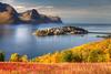 Husøy in Autumn (hapulcu) Tags: arctic husøy norge noruega norvege norvegia norway norwegen senja troms automne autumn autunno herbst høst toamna