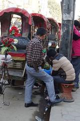 Curb-side gambling (posterboy2007) Tags: kathmandu nepal rickshaw cyclerickshaw street gambling drivers gamblers sony