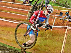 DSCN2108 (Ronan Caroff) Tags: cycling cyclism ciclismo cycliste cyclists velo bike course race cx cyclocross sport sports vern vernsurseiche bretagne breizh brittany 35 illeetvilaine championnat championship coupe cup contest competition championnatdebretagne mud boue