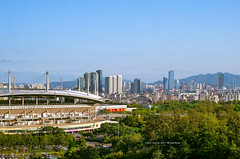 city view (gwnam.2008) Tags: city cityscape citylandscape cityinside cityview urban urbanscape urbanscenery urbanlife urbanlandscape urbannature stadium building buildingscenery buildingexterior officebuilding skyline mountain tree green greenery greencolor greenpark park forest 월드컵경기장 월드컵공원 sangamdong mapogu