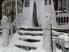 Christmas Morning (navejo) Tags: montreal quebec canada snow xmas lions steps porch