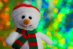Frosty (Eric Tischler) Tags: memberschoicebokeh macromondays
