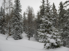 PC280009 (turbok) Tags: berge landschaft stimmungen tauplitzalm totesgebirge winter c kurt krimberger