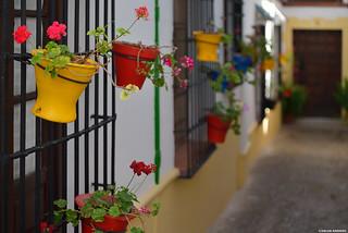 Colors of Ronda (Málaga, Spain).