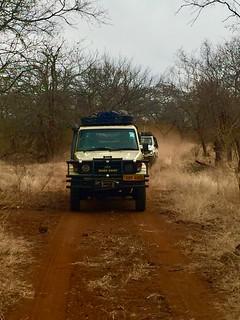 Zimbabwe Cape Buffalo Hunt 61