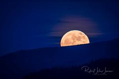 Super Moon a Rise'n (~ Bob ~) Tags: tamron landscape d500 moonrise fullmoon moon feisol supermoon washingtonstate nikon