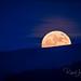 Super Moon a Rise'n