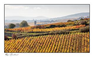 Villages viticoles
