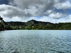 Wailua River State Park - Fern Grotto (69) (pensivelaw1) Tags: hawaii kauai wailuariverstatepark ferngrotto
