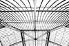 Greenhouse Roof (fxdx) Tags: greenhouse roof kew garden london rx100m3 mono monochrome bw nb