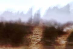 Kangastuksia (Olli Tasso) Tags: icm intentionalcameramovement liike kangastus mirage landscape abstract abstrakti maisema lieto suomi finland field pelto puuraja treeline hay heinä stormy moody myrskyinen