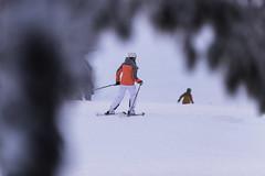 Tahko downhill December 2017 (VisitLakeland) Tags: downhill skiing slalom slope skitree snow winter finland tahko laskettelu lumi talvi rinne