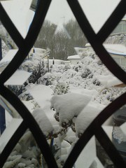Photo of Shobdon snow.  Taken on my mobile for convenience!