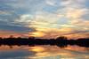 Homeward Bound (NaturalLight) Tags: canada geese sunset water reflections chisholmcreekpark wichita kansas