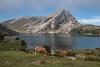 Lagos de Covadonga (efe Marimon) Tags: canoneos70d felixmarimon asturias lagosdecovadonga picosdeeuropa