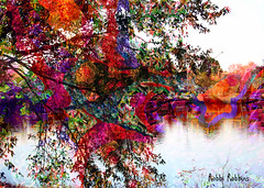 River View (brillianthues) Tags: river cooper reflection trees colorful collage photography photmanuplation photoshop