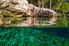 Jumping In Tortuga Cenote (aaronrhawkins) Tags: jump cenote clear mexico tulum caribbean yucatan peninsula riviera maya vacation boy swim joshua aaronhawkins underwater cliff