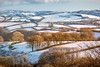Sugardust (Sarah_Brooks) Tags: lanscape snowscape snow trees land winter december exmoor somerset