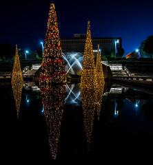 Christmas-lights_DSC6451 (Mel Gray) Tags: newsouthwales newcastle christmas christmaslights nightphotography christmastrees