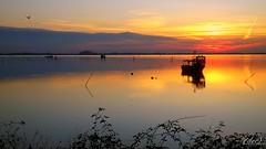 """___ tramonto lagunare! ___ """"explore"""" (erman_53fotoclik) Tags: tramonto sunset riflesso acqua cielo luce calore laguna chioggia veneto barca orizzonte nuvole riva mediacom s501 erman53fotoclik calma crepuscolo rovi paesaggio panorama barche pali pace tranquillità"""