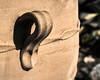 The Potter's Thumbs (Cirrusgazer) Tags: cretanpot crete greek greekurn clay handle handmade pithoi pot texture urn sunlight shadow