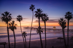 California Dreamy (Roving Vagabond aka Bryan) Tags: sanclemente pier socal california ca sunset water ocean palm trees sky sand landscape seaside seascape beach sea tree sony a7rii 35mm long exposure longexposure dusk bluehour blue hour explore waves