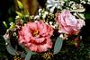 Rosenstrauß (ingrid eulenfan) Tags: blumenstraus rosen pflanze