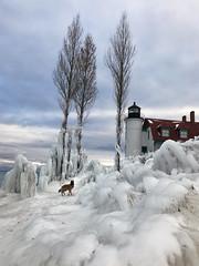 Star Explores Pt. Betsie   [Explore] (GLASman1) Tags: ptbetsie star ice cold belgian tervuren dog lighthouse