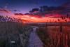Tonight's Supermundane Clouds and Sunset Fro Cape Cod (Dapixara) Tags: purple clouds winter beach sunsets orleansma rockharbor supermundane sunset eastham dapixara photography capecod massachusetts usa