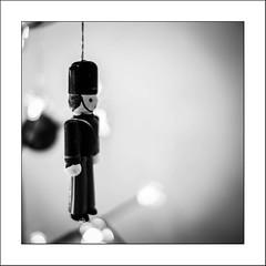 Au garde-à-vous... (Panafloma) Tags: 2017 bandw bw evènements famille nadine nadinebauduin natureetpaysages noël objetselémentsettextures personnes techniquephoto végétaux arbre blackandwhite boule décoration décorationnoël guirlande noiretblanc noiretblancfrance sapin france fr