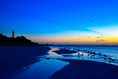 Sanibel Sunrise - October 2017 (Will-Jensen-2020) Tags: lighthousepointpark island fortmyers gulfofmexico gulf morning 2017 october sunrise blue sky birds water sand beach park southpointe lighthouse sancap sanibel florida sanibelisland usa