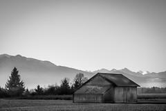 barn I (Lars Denker) Tags: sw bw schwarz weiss black white landscape barn heuschober hütte hut bayern bavaria benediktbeuern dunst