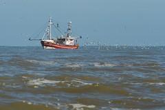 Fischkutter vor Baltrum (karstenniehues) Tags: insel nordsee meer wasser strand schiffe baltrum ostfriesland schiff kutter fischfang fischen