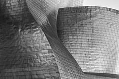 Shape and Structure (laga2001) Tags: building architecture bilbao gehry guggenheim museum facade shape curve pattern structure texture repeating contemporary blackandwhite bnw monochrome innovative random