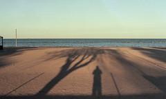 img294 (Giulio Gigante) Tags: film analog filmisnotdead landscape colori colors eccoqua abruzzo italia italy giulio giuliogigante giuliogigantecom paesaggio documentario document documentary allaperto strada mare adriatico adriatic coast kodak portra160 scan negative sea beach spiaggia sabbia acqua erba cielo 35mm pescara people oceano