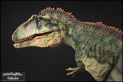 Giganotosaurus  ( 1:35 ) (RobinGoodfellow_(m)) Tags: giganotosaurus vitae 135 china dinosaur dinosaurus theropod cina animale