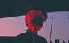 you're a flower (GerardUntalan) Tags: flower silhouette chill morning myself taken by friend
