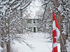 Home Sweet Frozen Home (LupaImages) Tags: home house cold snowfrozen white building flag trees outdoors outside front snow witner january