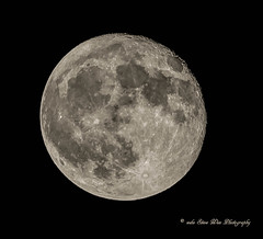 older Super moon shot (wdwSteve) Tags: nikon d750 sigma 50150mm f28 2xteleconverter supermoon