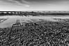 Veille des fêtes de fin d'année (Fabrice Denis Photography) Tags: seascapephotography noiretblanc bwphotography coastalphotography monochromephotography sea blackandwhitephotos atelierphotobalades blackandwhitephotographer ocean monochrome coastal oceanphotography blackandwhite seascapes seascapephotographer blackandwhitephotography seascapephotos ostréiculture bourcefranclechapus nouvelleaquitaine france fr
