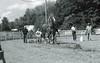 Albion Fair 2017 (rentavet) Tags: analog albionpafair kodakc41bw2 nikkormatel nikkor105mm drafthorses