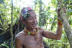 In the Mentawai rainforest (10b travelling / Carsten ten Brink) Tags: 10btravelling 2017 asia asie asien carstentenbrink iptcbasic indonesia indonesian indonesie indonesien madabay malabay mentawai mentawaian mentaweier siberut sumatera sumatra sumatran ugai ugay westsumatera westsumatra ethnic ethnicminority group healer island islands jungle loincloth medicineman rainforest shaman skills tattooed tattoos tenbrink tribe