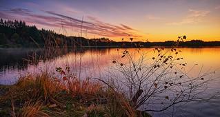 Autumn morning, Norway