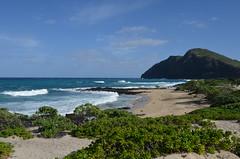 Hawaiian Coast (trailwalker52) Tags: hawaii oahu ocean shore waves sand