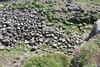 IMG_3426 (avsfan1321) Tags: ireland northernireland countyantrim unitedkingdom uk giantscauseway causewaycoast wildatlanticway basalt rock stone blackbasalt column columnarjointing columnarbasalt ocean atlanticocean landscape