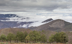 Mar de Nubes (misterkoma) Tags: canon 6d sierra hez nubes mar montaña paisaje landscape mountain blanco white camino campo naturaleza verde marron arbol la rioja alfaro españa 1635 70200 f4 is l cloud sky sea